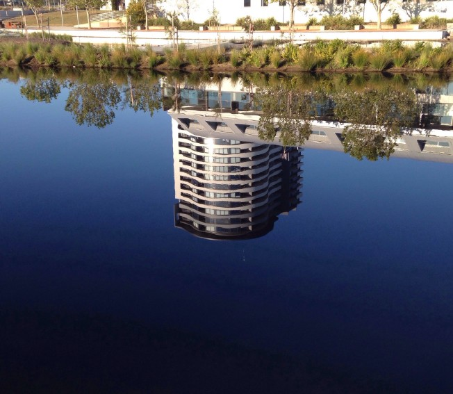 A reflection in the water of Lake Ginninderra
