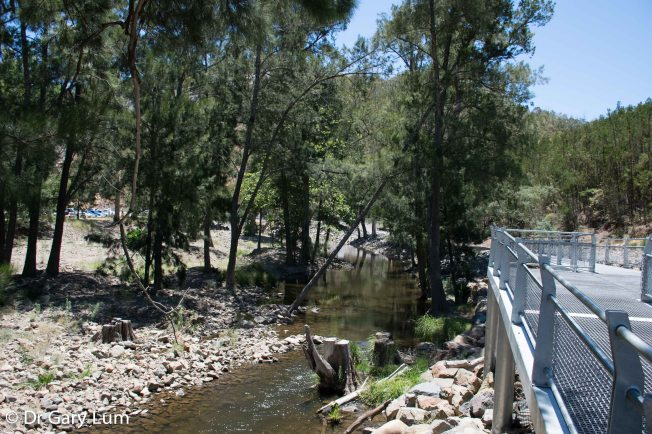 Monday 2014-01-27 13.21.29-1 AEDT Near the picnic area at Cotter Dam